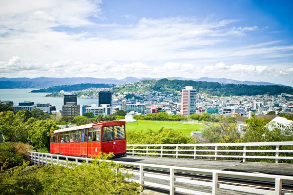 Wellington Tour